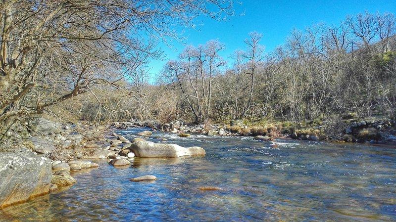 Río Tormes. EDS La Aliseda. Tramo por encima del pueblo, antes de la piscifactoría.