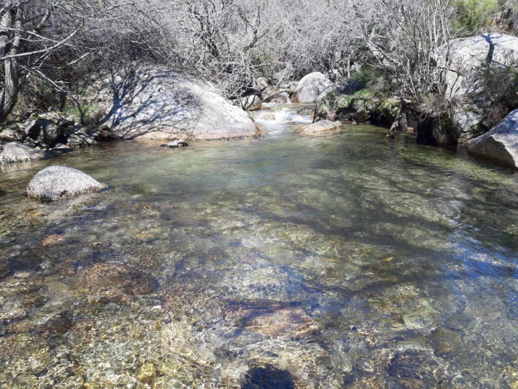 Circular Hoya de San Blas - Arroyo Mediano